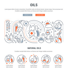 website banner and landing page natural oils vector image