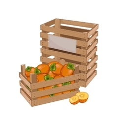 Wooden box full of persimmon isolated vector image