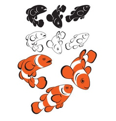 clown fish vector image vector image