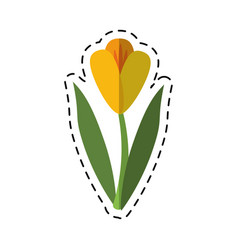 cartoon flower flora fragant garden vector image vector image