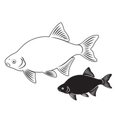 Bream fish vector