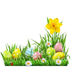 easter concept with narcissus vector image