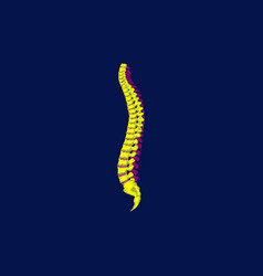 Flat shading style icon vertebral column vector