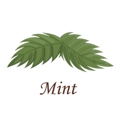 Fresh raw mint leaves vector