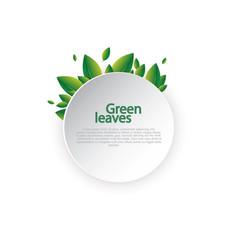 fresh spring green grass leaves frame template vector image