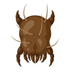 Icon dust mite insect vector