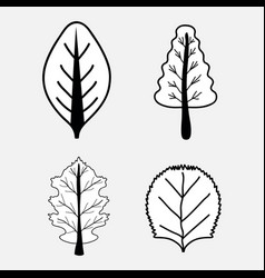 nice set of trees with leaves vector image