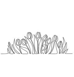 Tulip flower line art minimalist contour drawing vector