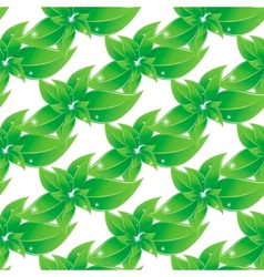 Branch with green leaves Seamless background vector image vector image