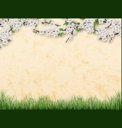 branches with flowers and leaves on stucco wall vector image vector image