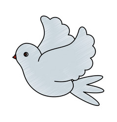 color pencil image side view dove bird flying vector image vector image