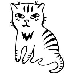 Tabby cat Black outline sketch vector image vector image
