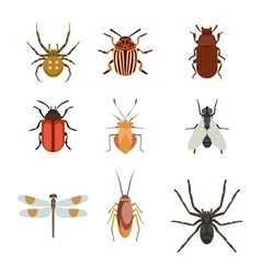 Insect icons flat set isolated on white background vector image vector image