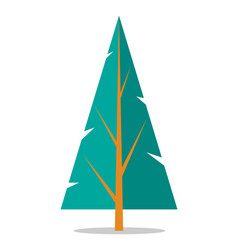 flat spruce icon isolated on white vector image vector image