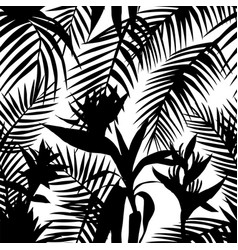 black white seamless tropical jungle vector image
