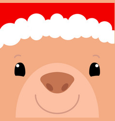 cute bear face santa claus hat bear vector image