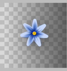 flowers on a transparent vector image