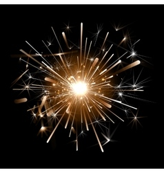 Orange firework on a black background vector image