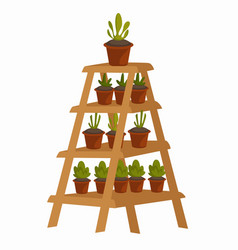 plants in pot on wooden stand floral interior vector image