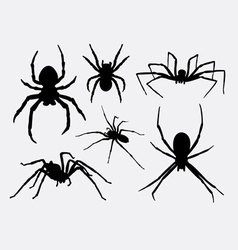 Spider insect animal silhouettes vector