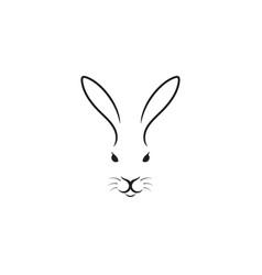 white rabbit easter bunny vector image