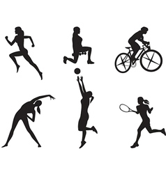 Women in different kinds of sport vector image