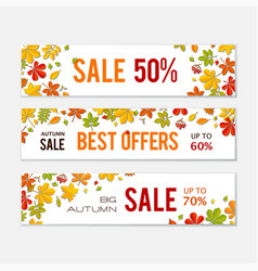 sale banner set with bright autumn leaves isolated vector image vector image