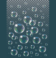 realistic isolated soap bubbles on the vector image vector image
