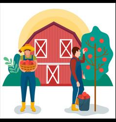 Farmer harvesting apples for your design modern vector