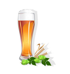 realistic glass with beer vector image