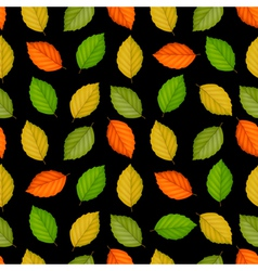 Seamless pattern with colored leaves on black vector image