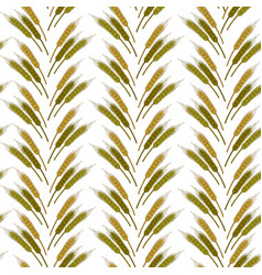 wheat spikelets in rows agriculture and vector image