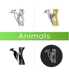 Woodpecker icon vector