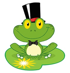 Frog Groom On A Lilypad vector image