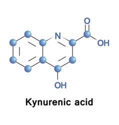 kynurenic acid tryptophan vector image