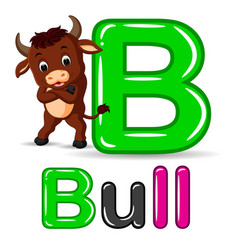 animals alphabet b is for bull vector image