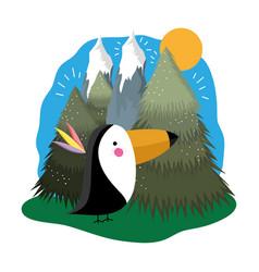 Cute bird toucan in the landscape vector