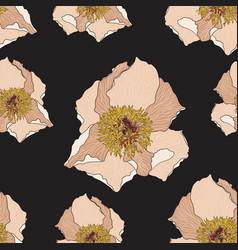 cute floral pattern with beige peony flower vector image