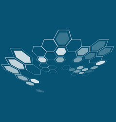 hexagon shapes layout science technology vector image