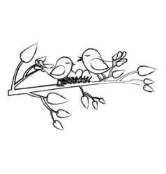 monochrome sketch of birds and nest in tree branch vector image