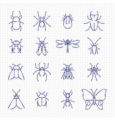 Sketch drawing line insect icons collection vector