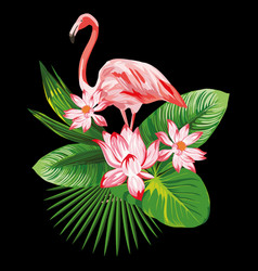 tropical composition pink flamingo flowers eaves vector image