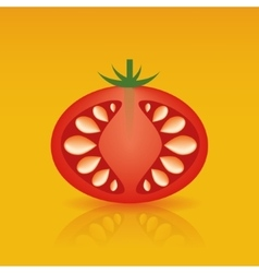 red tomato vector image vector image