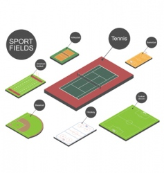 sport fields vector image