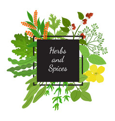 hebs spices in cartoon flat style design vector image vector image