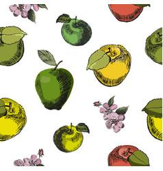 apple sketch seamless patternvintage ink hand vector image