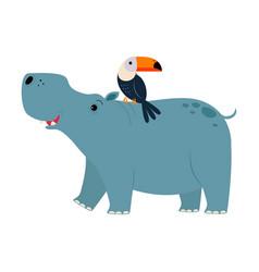 cute hippopotamus and toucan animals exotic vector image