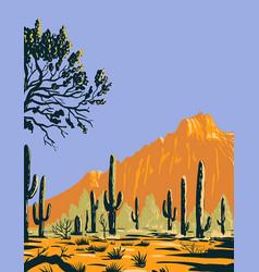 saguaro cactus or carnegiea gigantea in ironwood vector image