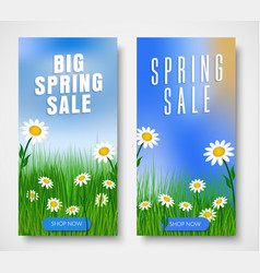 Set of vertical web banners for spring sales vector