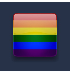 Square icon with rainbow flag vector image
